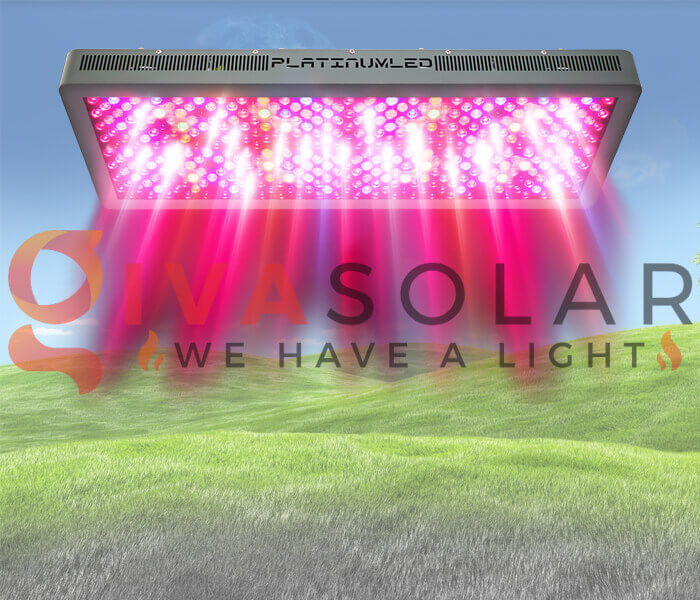 Mua đèn LED quang hợp cho cây trồng ở đâu 5