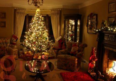 Hướng dẫn trang trí cây thông Giáng Sinh